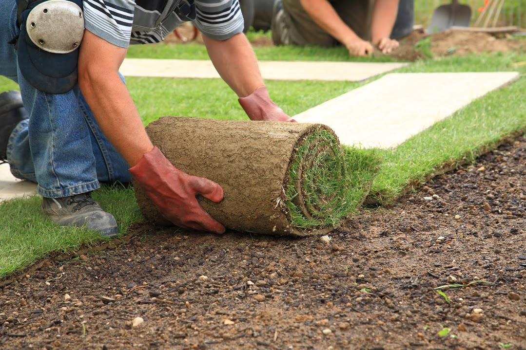What's in store From Innovative Landscaping Designers